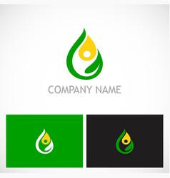 eco green leaf water drop bio logo vector image vector image