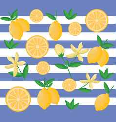 lemon pattern striped background decor vector image