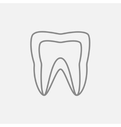 Molar tooth line icon vector image