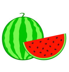 Watermelon fruit icon vector