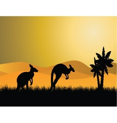 Kangaroo sunset vector