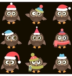 Cute brown owls with hats vector image