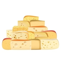 Many pieces of Various types of Cheese together vector image