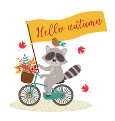 card raccoon rides bicycle with autumn leaves vector image vector image