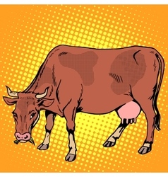Cow eating grass farm animals vector image