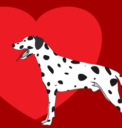 Dalmation and heart vector
