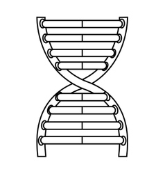 Dna molecule isolated icon design vector
