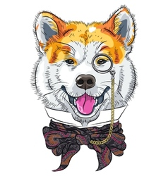 Funny cartoon hipster dog akita inu vector