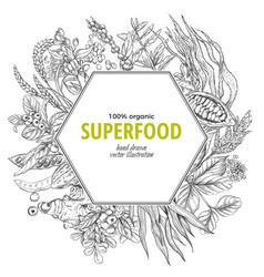 superfood hexagon banner sketch vector image vector image