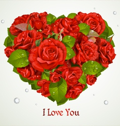Valentines Red Roses Card vector image vector image