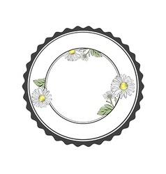 Daisy flower round frame vector