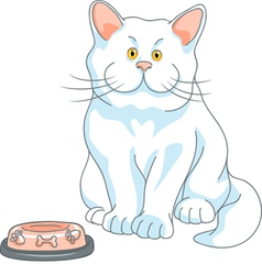 Cute white cat with yellow eyes and empty bowl vector