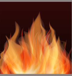abstract fire flame background vector image