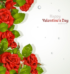 Valentines day card with red roses vector image