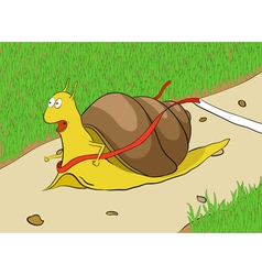 Snail on a racetrack vector image