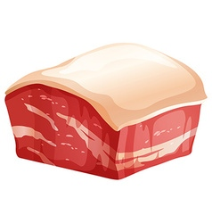 Chunk of pork with skin vector