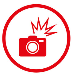 camera flash rounded icon vector image