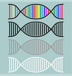 dna or desoxyribonucleic acid icon vector image