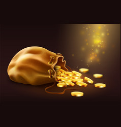 sack with spilled magic golden vector image vector image