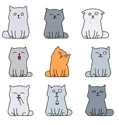 Nine cute kittens vector image vector image