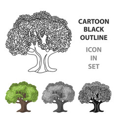 Olive treeolives single icon in cartoon style vector