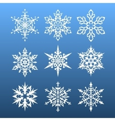 snowflakes set nine design element vector image vector image
