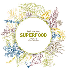 superfood round banner color sketch vector image