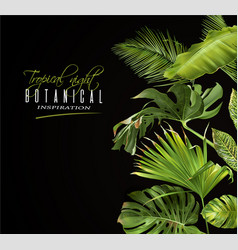 tropical night banner vector image vector image