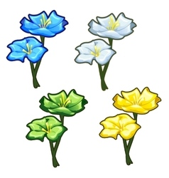 Four bright yellow blue green and light flowers vector