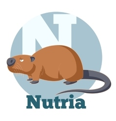Abc cartoon nutria vector