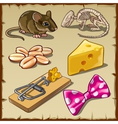 Big mouse set and symbols cheese and other vector