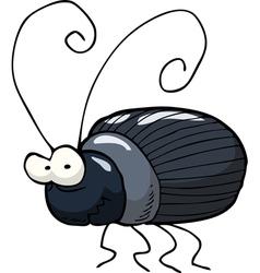 black beetle vector image vector image