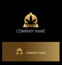 Cannabis leaf triangle gold logo vector