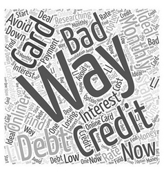 credit card bad debt Word Cloud Concept vector image
