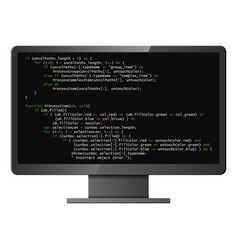 Monitor with program code on screen vector