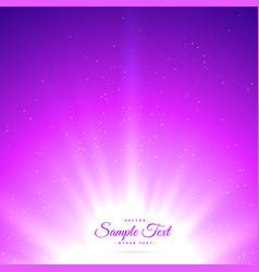 Purple sunburst shiny glowing background vector