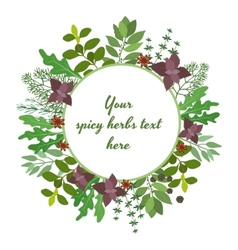 Fresh herbs circular frame vector