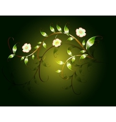 Wavy pattern of beautiful green flowers on a dark vector