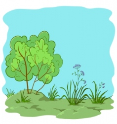 garden with bush vector image