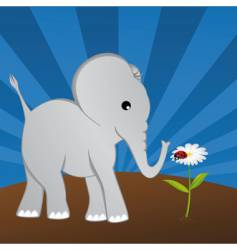 elephant with ladybug on daisy vector image