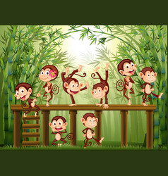 Scene with monkeys in the bamboo forest vector