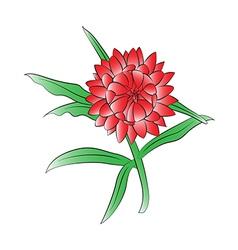Straw flower vector
