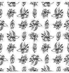 floral background black white vector image vector image