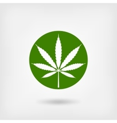 marijuana leaf in green circle logo symbol vector image