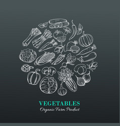 poster with hand drawn vegetables vector image