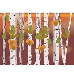 Birch grove vector