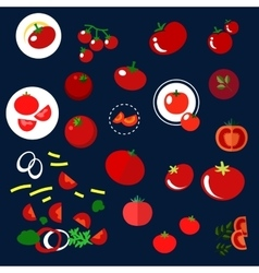 Red tomatoes vegetables flat icons vector