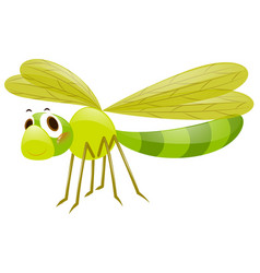 dragonfly in green color vector image