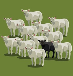 Animal sheep black on green vector
