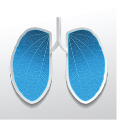 Lungs abstract in blue color vector